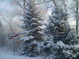 Svrabov současnost-zima